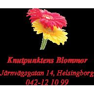 Knutpunktens Blommor